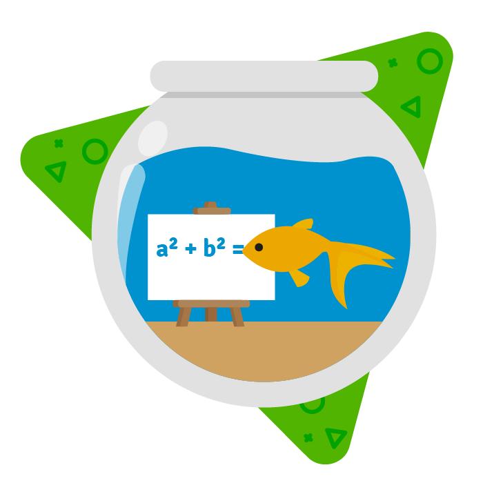 Sind Goldfische schlauer als Menschen? - Blog
